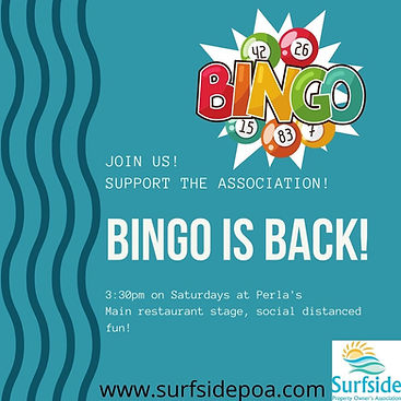 BINGO IS BACK!.jpg