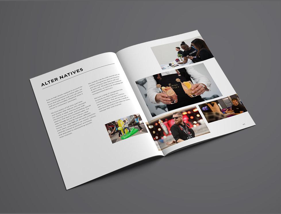 ALTER Brandbook by Romi Nicole Schneider