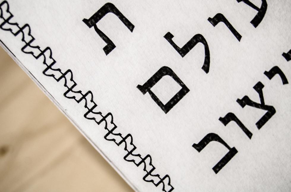 Hebrew in the World of Design Romi Nicole Schneider3.jpg