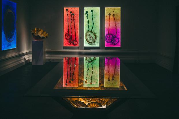Exhibition Gallery Photography Romi Nicole Schneider10.jpg