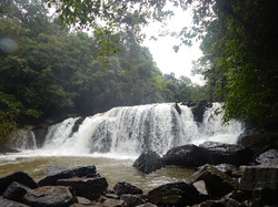 Mookanamane water fall