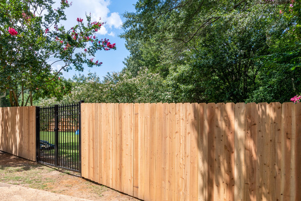 Fence-5.jpg