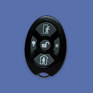 Five Button Fob - web.jpg
