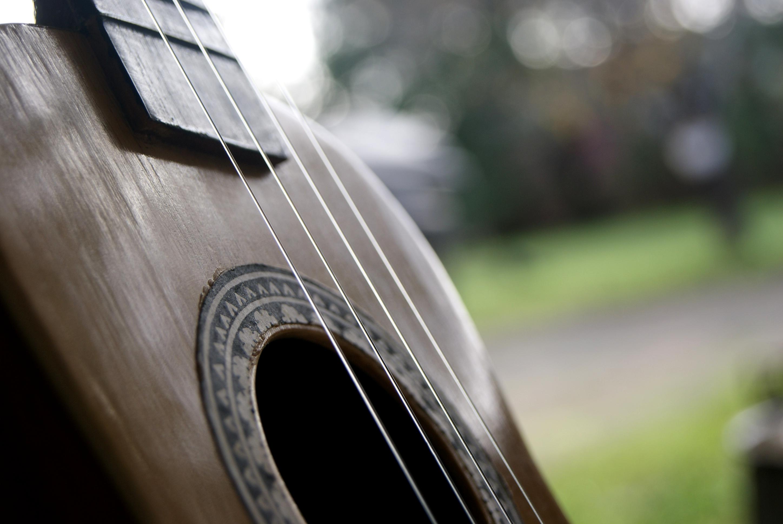 bkg_ukulele