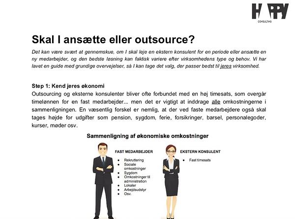web_konsulent_øko.png