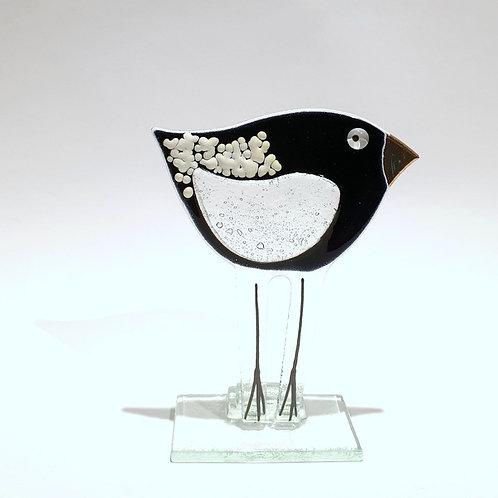 Ptaszek mały czarny