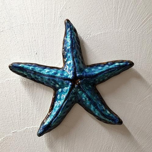Rozgwiazda duża