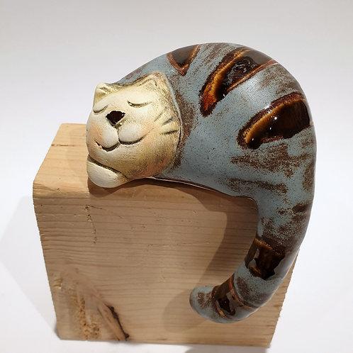 Kot z ogonem mały szary