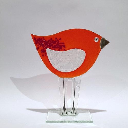 Ptaszek duży czerwony