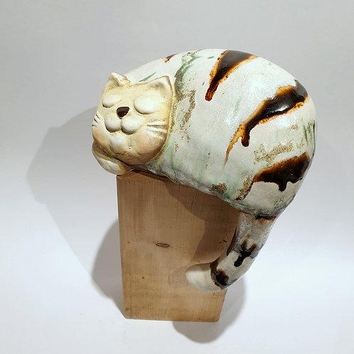 Kot z ogonem duży biały