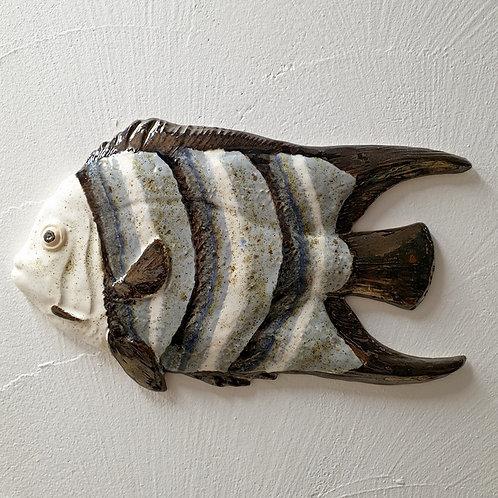 Ryba wielka biało-szara