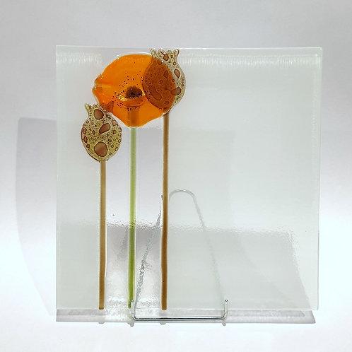 Talerz mak 24x24cm - pomarańczowy