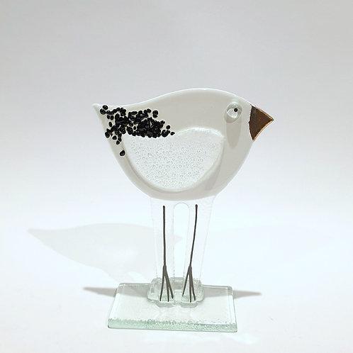 Ptaszek mały biały