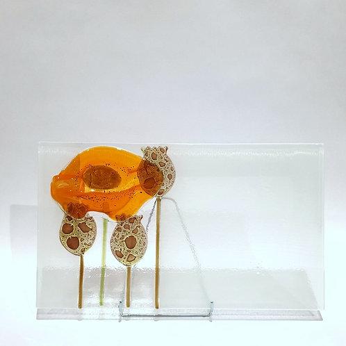 Patera mak prostokąt - pomarańczowy