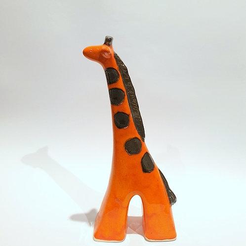 Żyrafa średnia pomarańczowa