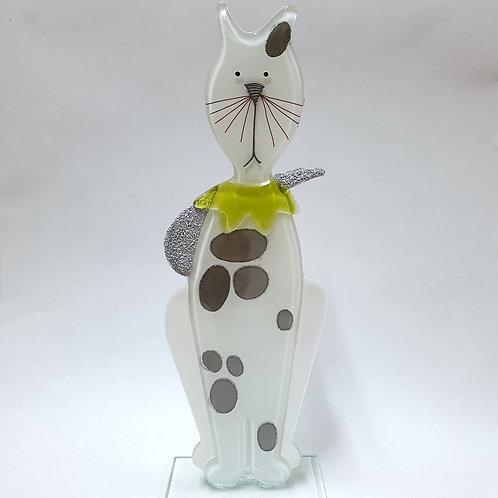 Kot Emil - biały