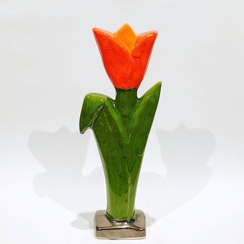 Kwiat tulipan duży3