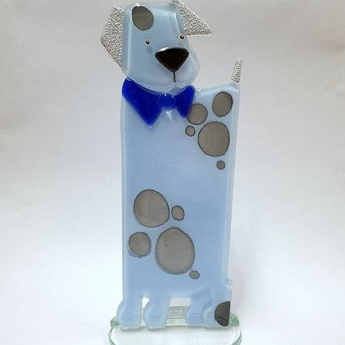 Pies Rufus - błękitny
