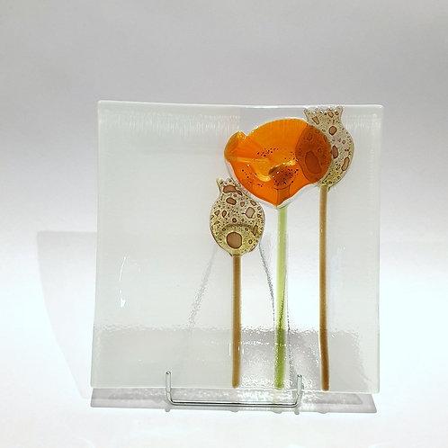 Talerzyk mak 19x19 - pomarańczowy