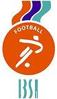 ibsa football logo1.jpg