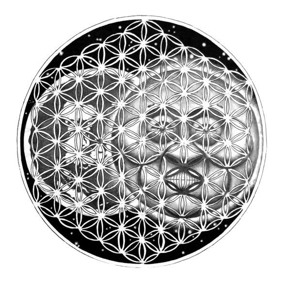Cosmic Ray Network.jpg