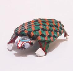 Kabuki Turtle