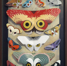 13 Butterflied Owls