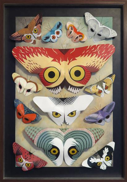 13 Butterflied Owls.jpg