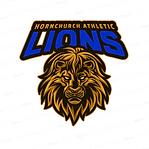HACC U9 Lions.png