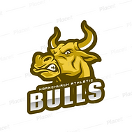 Bulls Final.png