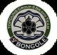 bongo03.png