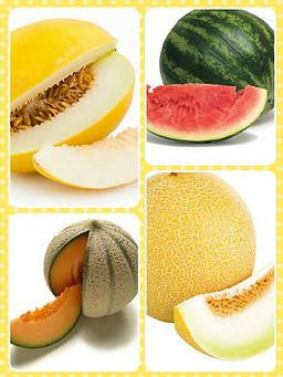 meloenen.jpg