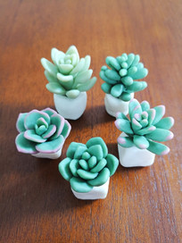 3D soap clay models - mini succulent plants made from cold process soap clay