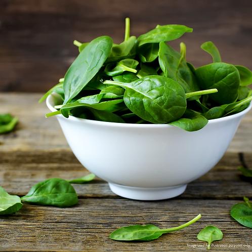 Spinach Powder (10g)