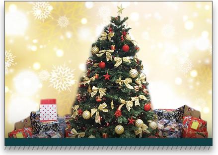 Sicoob UniMais finaliza a Campanha de Natal Solidário