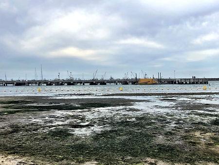 March port arlington.jpg
