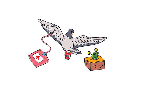 pigeon donation and blood NO CIRCLE.jpg