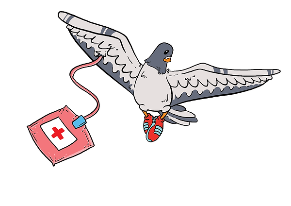 pigeon giving blood.png