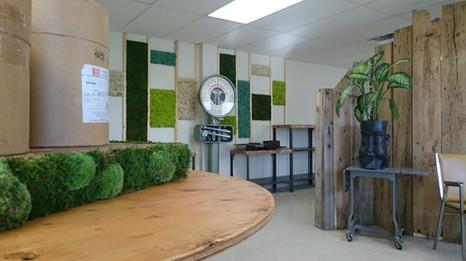 Aménagement show room autour du végétal
