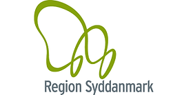 region syddanmark.png