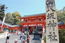 京都 八坂神社 祇園 桜