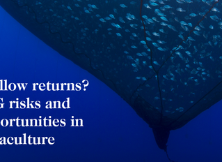 Rapportlansering - Shallow returns? ESG risks and opportunities in aquaculture