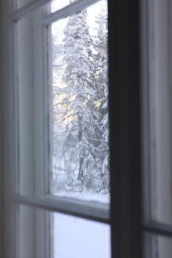 SocionomkonsultCLK fönster