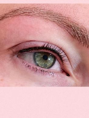 Microblading Eyebrows St Louis.jpg