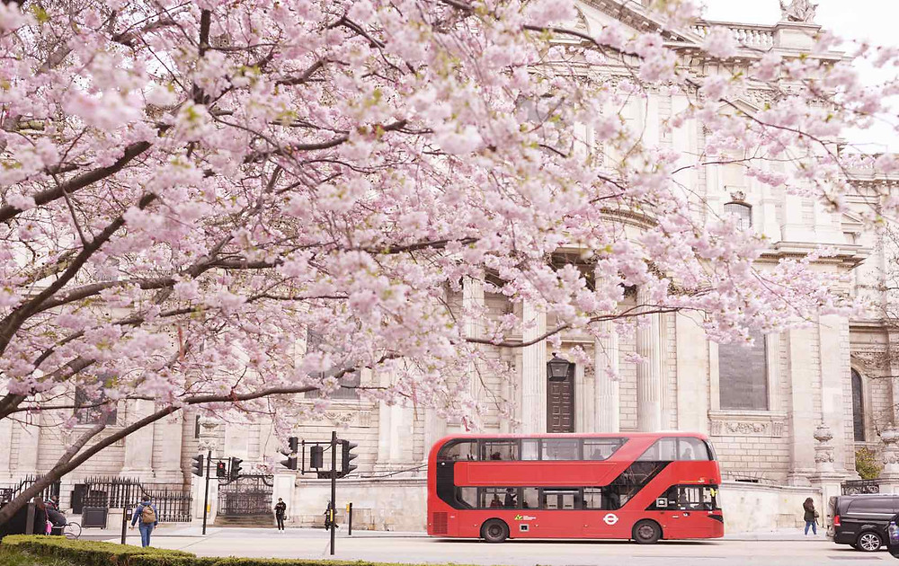 London Tantric