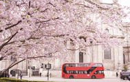 Tantric London: Spring is in the Air