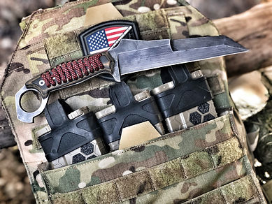 UCB-PLATE CARRIER.JPG