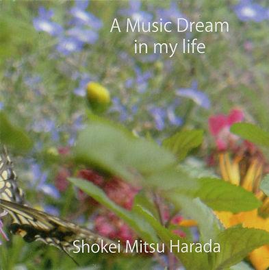 A music Dream.jpg