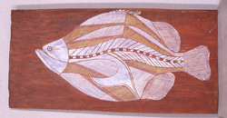 牡のムーンフィッシュ Male Moonfish