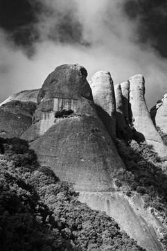 36 | Rocky Mountain